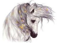 Лошадь цветы