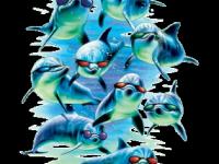Дельфины в очках